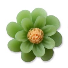 18mm Spring Green Daisy Resin Flatback Cabochons